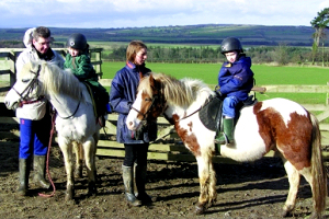Townfoot Riding School and Stables, near Alnwick, Northumberland